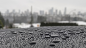 Metro Vancouver rain beading on top of a car. (Raj Prasad photo)