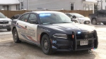 Shelburne police future in question