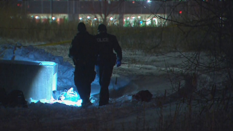 woman stabbed York university