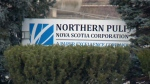 Northern Pulp issues layoff notices