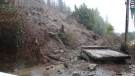 The aftermath of a mudslide in Burnaby is shown. (Shane MacKichan / provided)
