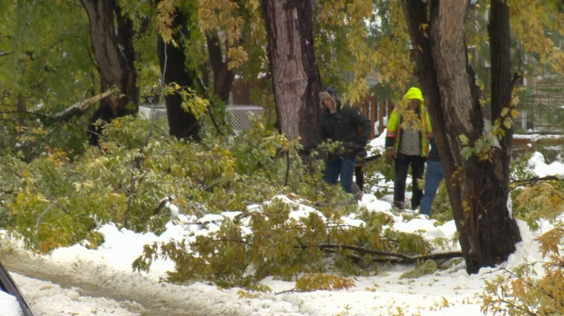 Winter storm financial assistance now ready