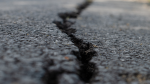 A cracked driveway is shown in an image from shutterstock.com