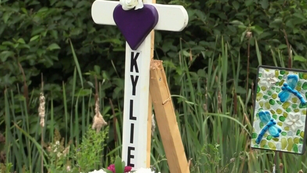 Halifax questions the safety of roadside memorials