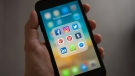 Person holding iphone showing social networks folder. (Tracy Le Blanc/Pexels)
