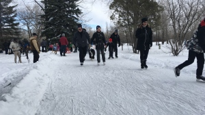 People flooded to Echo Valley Provincial Park to try out the new skating paths around the campground. (Cole Davenport/CTV News)