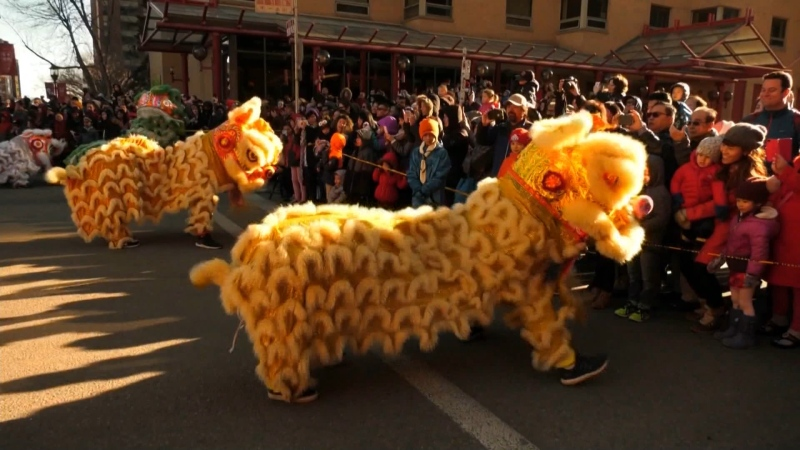 Chinese New Year, Calgary, Jan 25 2020