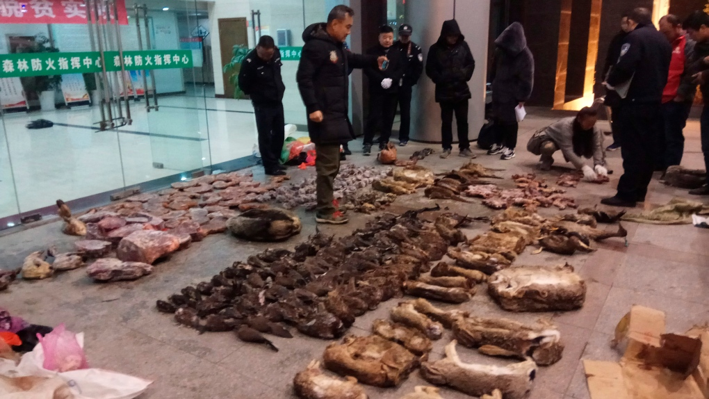 China has temporarily banned its wildlife trade because of the coronavirus outbreak