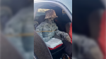 A driver in Arizona attempted to pass off a skeleton in a bucket hat as a passenger in order to use the carpool lane, but was thwarted by the authorities (Arizona Department of Public Safety/Twitter)