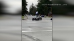 Man jumps on car in Maple Ridge
