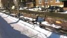 Park bench plaques stolen