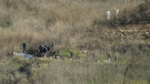 Investigators combing helicopter crash site