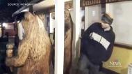 Thief stealing island bear statue caught on cam