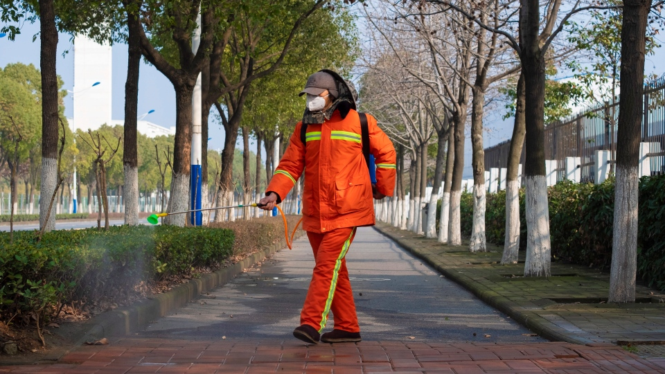 A worker wearing a face mask sprays disinfectant along a path in Wuhan in central China's Hubei Province, Tuesday, Jan. 28, 2020. (AP Photo/Arek Rataj)