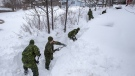 Soldiers from the 4th Artillery Regiment based at CFB Gagetown clear snow at a residence in St. John's on Monday, January 20, 2020. THE CANADIAN PRESS/Andrew Vaughan