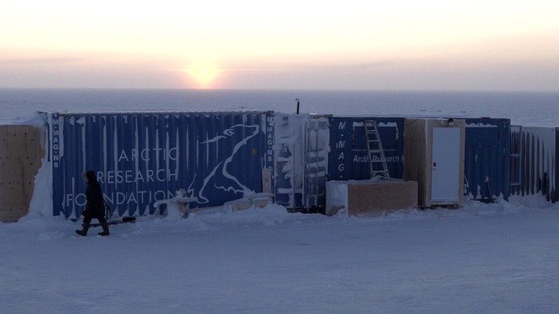 A new greenhouse project in Nunavut developed by the Arctic Research Foundation is bringing food and jobs to a community that faces grocery costs 10 times the national average. (CTV)