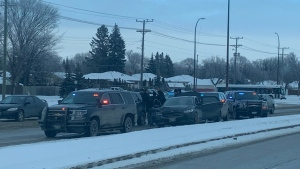 On Tuesday, Jan. 28, Winnipeg police could be seen surrounding a vehicle on Fermor Avenue. (Source: Brendon Jones)