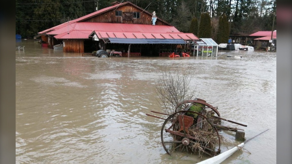 Flooding prompted a state of emergency in the Cowichan Regional District on Saturday. (Al Harland/Facebook)