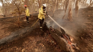Firefighters put out a spot fire near Michelago, south of the Australian capital, Canberra, Saturday, Feb. 1, 2020. The threat is posed by a blaze on Canberra's southern fringe that has razed more than 21,500 hectares (53,000 acres) since it was sparked by heat from a military helicopter landing light on Monday, the Emergency Services Agency said. (AP / Rick Rycroft)