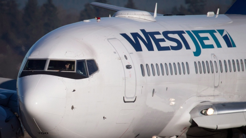 A pilot taxis a Westjet Boeing 737-700 plane to a gate after arriving at Vancouver International Airport in Richmond, B.C., on February 3, 2014. THE CANADIAN PRESS/Darryl Dyck