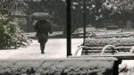 Snowstorm blasts B.C.'s South Coast