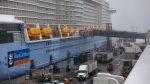The cruise ship Anthem of the Seas is docked at the Cape Liberty Cruise Port on Friday, Feb. 7, 2020, in Bayonne, N.J. Passengers were screened, as a precaution, for coronavirus. (AP / Kevin Hagen)