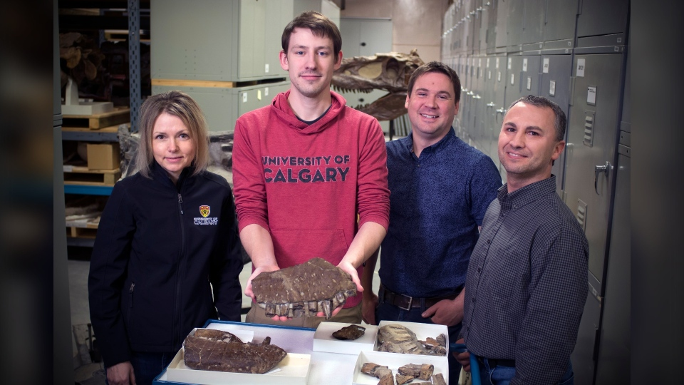 Dr. Darla Zelenitsky, Jared Voris, Dr. François Therrien and Dr. Caleb Brown with a fossilized skull fragment of a thanatotheristes degrootorum