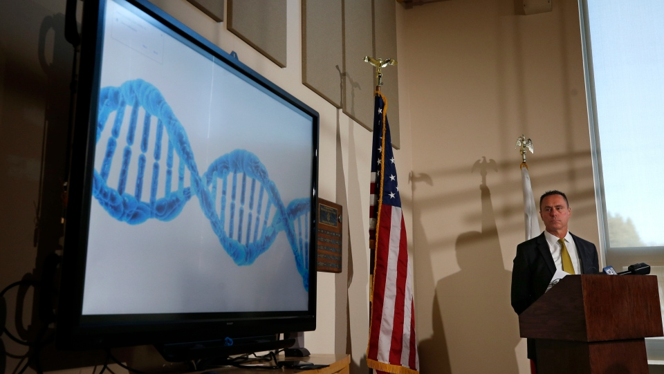 El Dorado County District Attorney Vern Pierson displays a generic genetic DNA ribbon as he discusses how new DNA evidence was used to help exonerate a man who spent about 15 years in prison after being wrongly convicted of killing his housemate, during a news conference in Placerville, Calif., Thursday, Feb. 13, 2020. (AP Photo/Rich Pedroncelli)