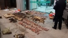 In this Jan. 9, 2020, file photo provided by the Anti-Poaching Special Squad, police look at items seized from store suspected of trafficking wildlife in Guangde city in central China's Anhui Province. (Anti-Poaching Special Squad via AP, File)