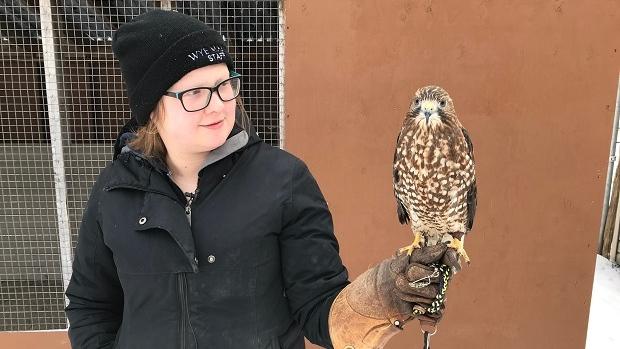 Ernie broadwing hawk