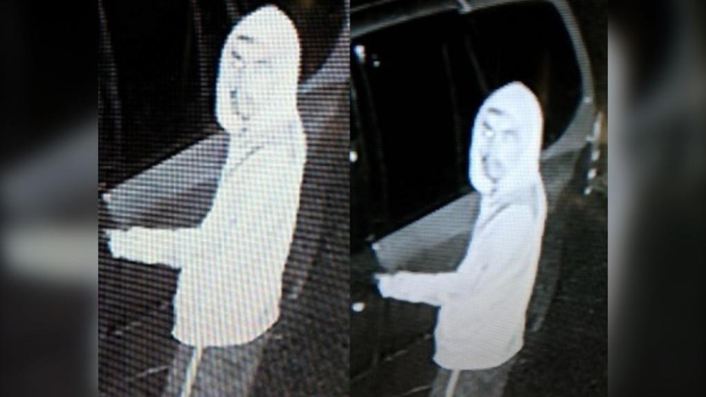 Port Hardy theft suspect