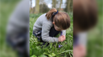 Princess Charlotte is seen in this image (Kensington Palace/Instagram)