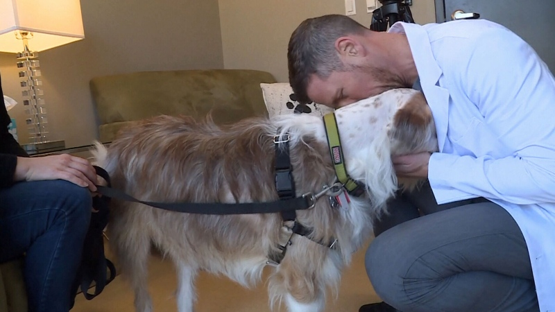 Dog gets lifesaving 3D printed implant