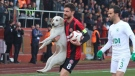 Dog fancies a free kick during soccer game