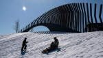 People go tobogganing at Lansdowne Park in Ottawa on Family Day, Monday, Feb. 17, 2020. (Justin Tang/The Canadian Press)