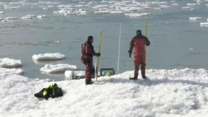 Brantford couple tried to save Lake Erie boys