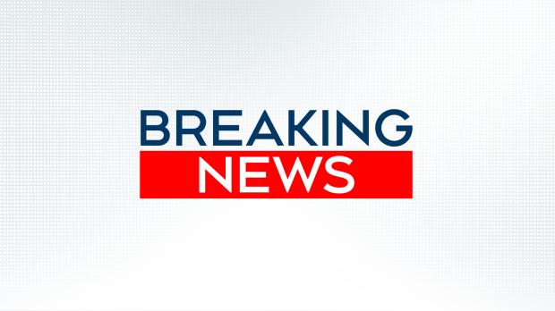 Car hits crowd at German carnival, several injured