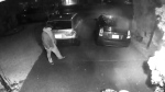 A suspect in more than two dozen cases of vehicle vandalism is seen in this handout image from Ridge Meadows RCMP.