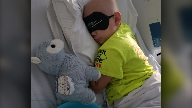 Seven-year-old Ollie's stuffed llama disappeared while undergoing treatment at CHEO. (CDawnPickering/Twitter)