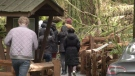 Signs posted in Cathedral Grove indicate filming taking place in the popular location this week. (CTV News)