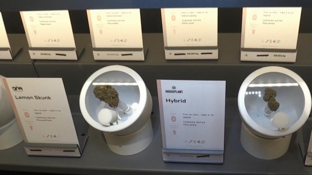 Cambridge pot shop opens its doors
