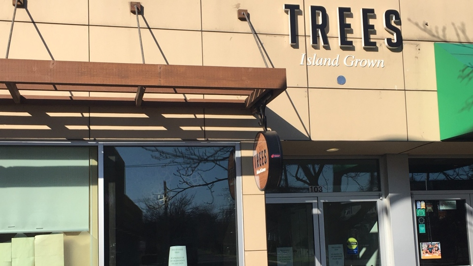 Trees cannabis dispensary