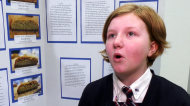 Science Fair season is in full swing in Calgary, most particularly at Webber Academy, which traditionally sends students to national and even international science fairs. Margo Kass talks about her project.