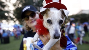Pet influencer Kathi Welch holds her dog Lucy for a photo at Doggy Con in Woodruff Park in Atlanta, on Aug. 17, 2019. (Andrea Smith / AP)