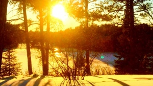 The sun is shining in Eagle River, cold but sunny! Photo by Connie Calvert.