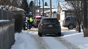 The alley between 133 and 134 avenues was cordoned off as police investigated an unknown incident. Feb. 20, 2020. (CTV Edmonton)
