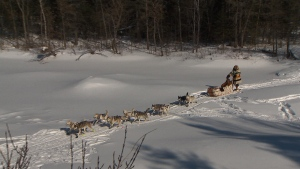 A dog sled used for the Metis' trip along Old Dawson Trail.