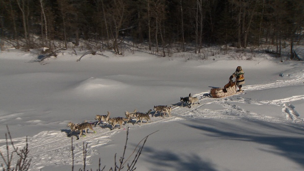 Metis travellers retracing historic route via dog sleds and horse-drawn carts