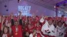 Furlong calls for another Olympic bid