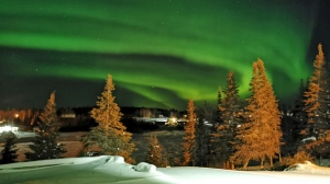 Northern Lights in God's Lake Narrows. Photo by Theoran White.